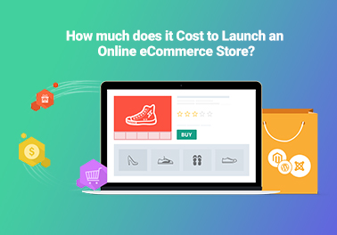 Online eCommerce Store Cost